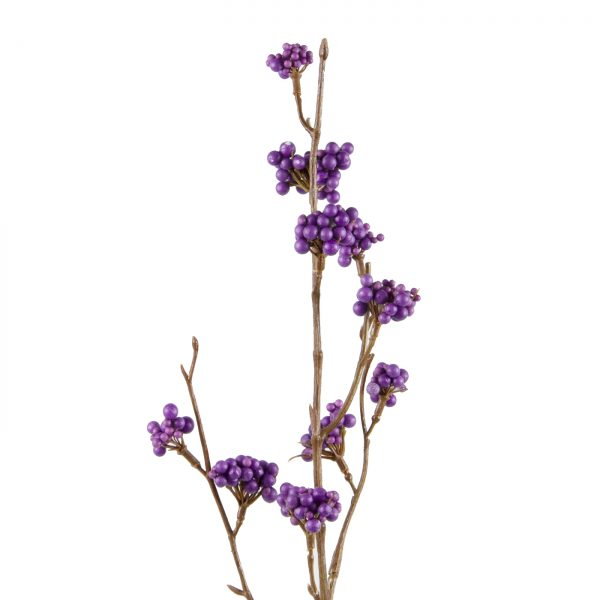 paarse besjestak