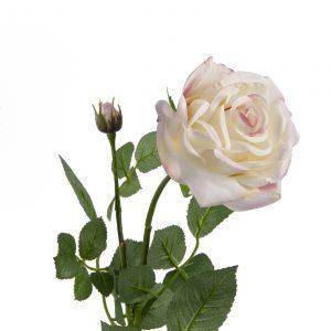 wit/roze zijden roos