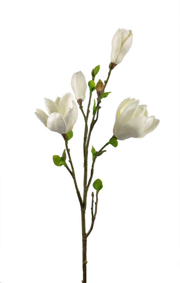 zijden magnolia