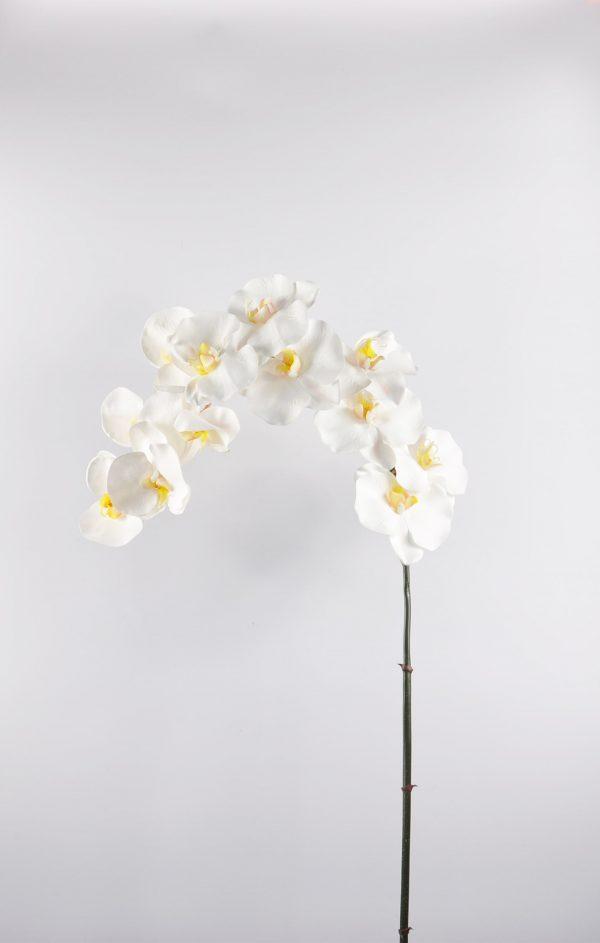 zijden orchidee