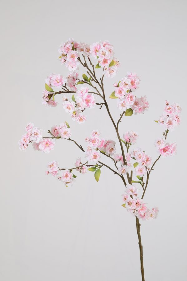 roze bloesemtak